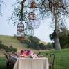 Love Birds | Decorating with Birdcages